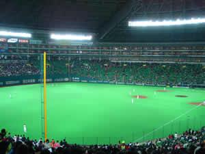 試合前のドームです。こんな位置から見てました。