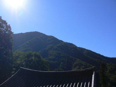 智異山の中腹なので、空気も綺麗なサンゲサ。