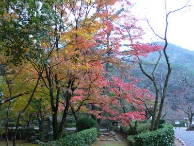 大寧寺。すっかり紅葉しててどこもキレイ。