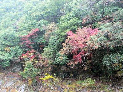 長門峡。雨がひどくていい写真とれませんでした。